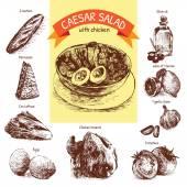 Vector colorful illustration of Caesar salad ingredients