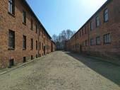 Auschwitz I - Birkenau bloky