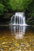 West Burton or Couldron Falls
