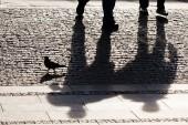 Shadows of two man walking
