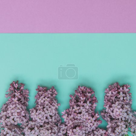 Photo for Flat lay stylish set: Lilac flowers on pastel background. Top view. - Royalty Free Image