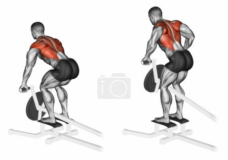 Thrust T-shaped on the back muscles in the slope. ...