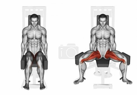 Photo for Thigh abductor exercise. Exercising for bodybuilding Target muscles are marked in red. 3D illustration - Royalty Free Image