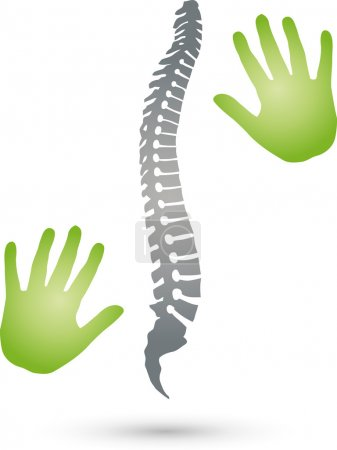 Back, spine, orthopedics, hands