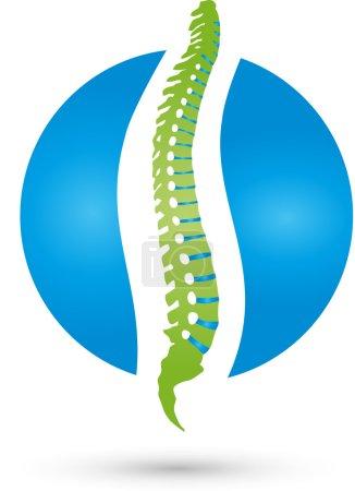 Back, spine, orthopedics, Massage Logo