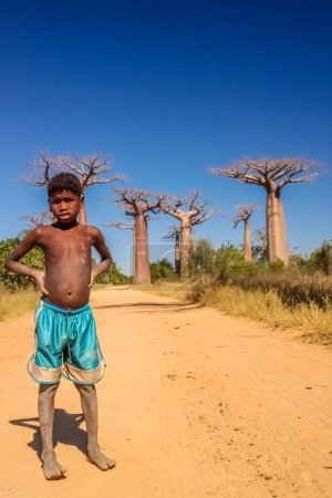 Malagasy boy and baobabs