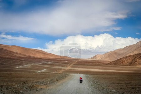 Cycling on tibetan plateau