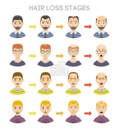 Baldness stages vector set.