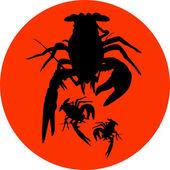 crawfish label crawfish silhouette crayfish icon lobster sign crawfish symbol lobster  Vector illustration