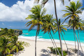 Tropical beach on the caribbean island (Bottom Bay, Barbados)