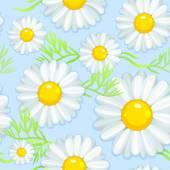 Bezešvé pozadí s květy heřmánku