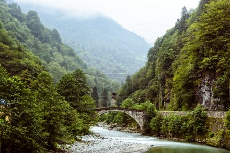 old stone bridge on the river to plateau  in the Black Sea Region, Turkey
