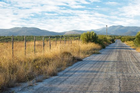 Old Asphalt Road With Mountain Background. Old Fashioned Wooden