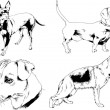 Vector drawings sketches pedigree dogs and cats  d...