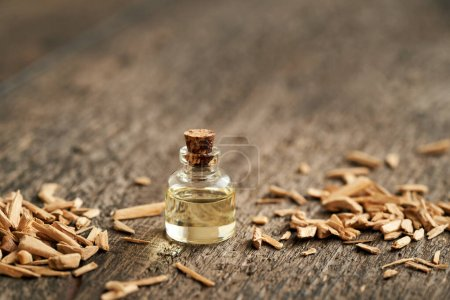 Photo for A bottle of essential oil with cedar wood chips, with copy space - Royalty Free Image