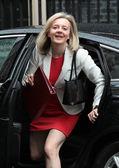 Politician Liz Truss