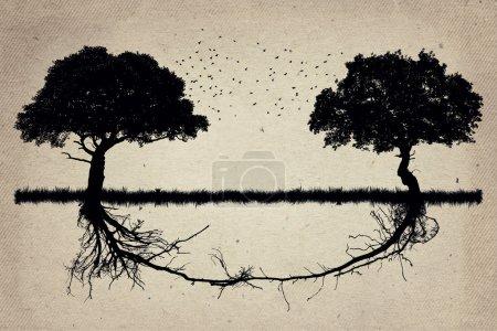 Die Natur arbeitet zusammen