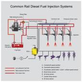 common rail diesel systems Vector Arts Illustrator