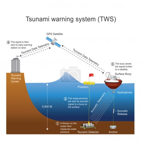Tsunami warning system. Vector design, Illustration.