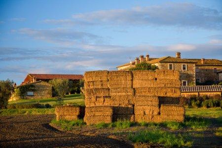 rural voir de meules de foin au champ