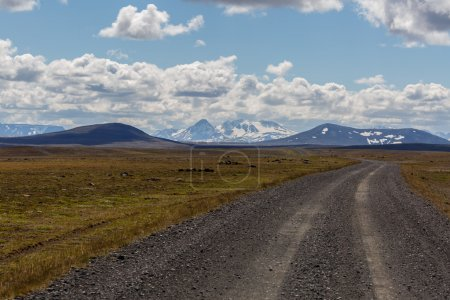 Road though the inland of Iceland