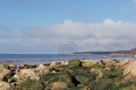 Photo for Beautiful, sea landscape in sunny, spring day. Latvia, Baltic Sea, Gulf of Riga - Royalty Free Image